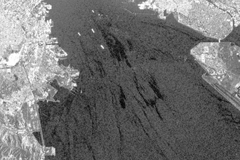 2007 San Francisco Bay Oil Spill - related image preview