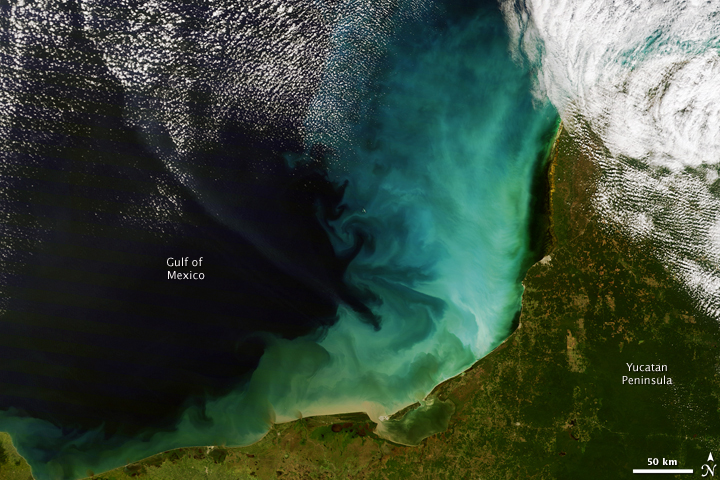 Sediment off the Yucatan Peninsula