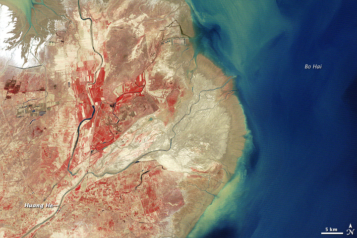 Yellow River Delta, China - related image preview