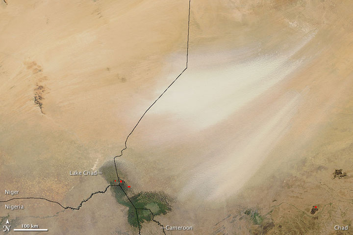 Dust Plumes from the Bodele Depression