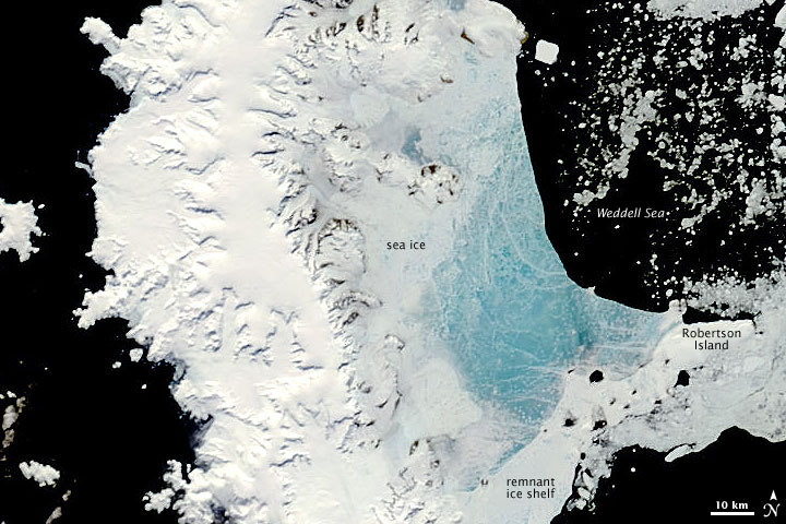 Changing Sea Ice along the Antarctic Peninsula