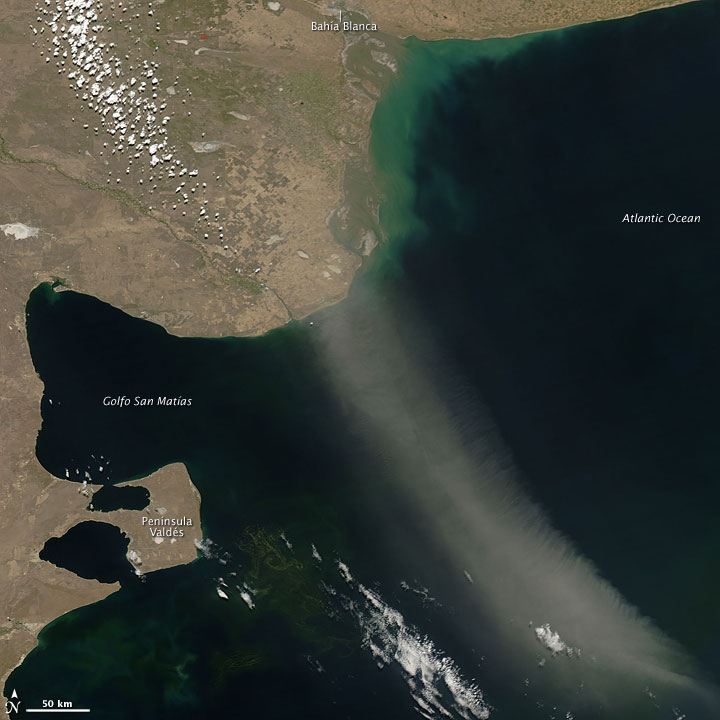 Dust Plume off Argentina