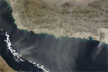 Dust Plumes over the Gulf of Oman
