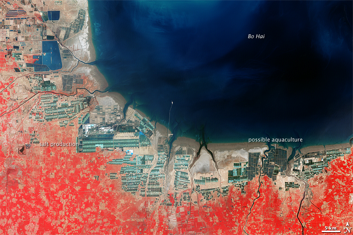 Aquaculture and Salt Production near Bo Hai, China - related image preview