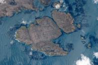 Kerguelen Kelp Beds, Southern Indian Ocean
