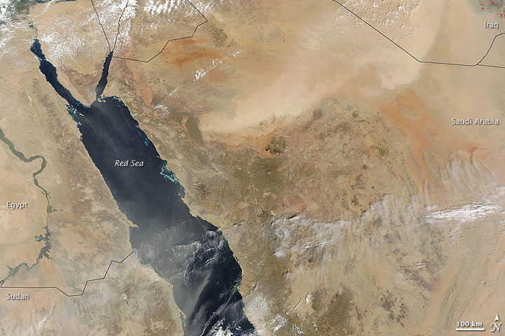 Dust East and West of the Red Sea