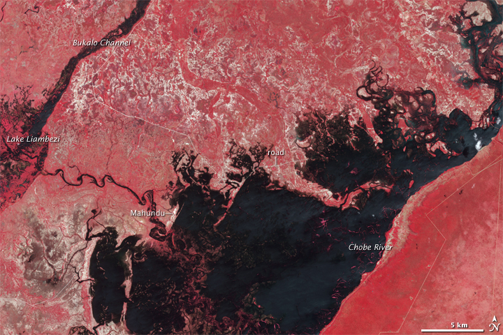 Deadly Flooding in Namibia - related image preview