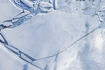 Wilkins Ice Bridge Collapse