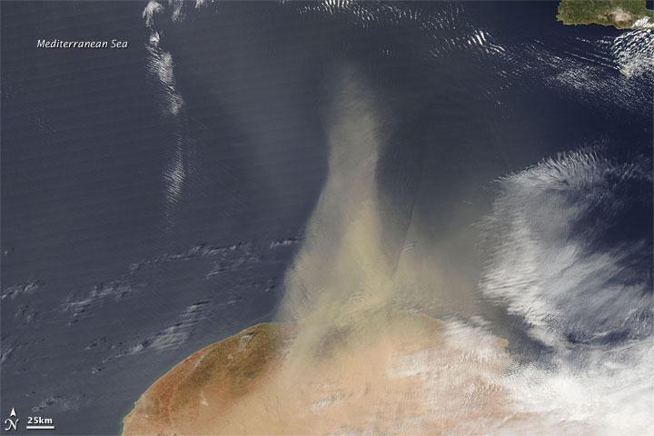 Dust Plume off Libya
