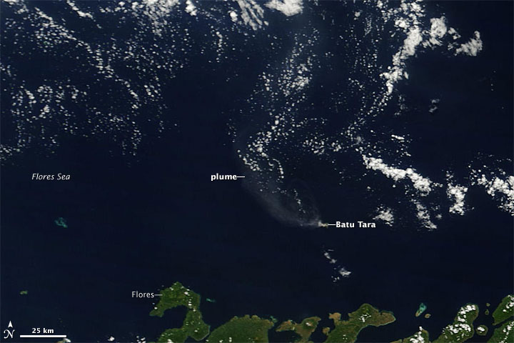 Plume from Batu Tara