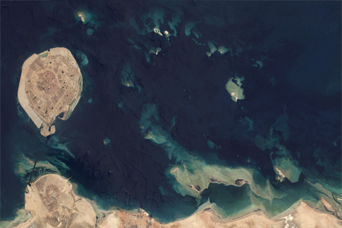 Coral Reefs in the Persian Gulf - related image preview