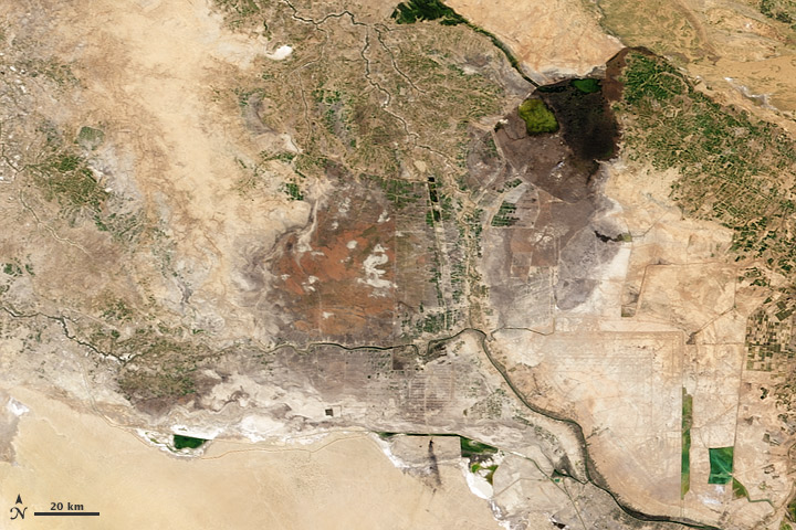 Reclaiming Mesopotamia's Marshes