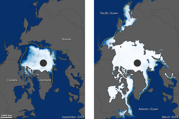 Arctic Sea Ice, 2002-2003