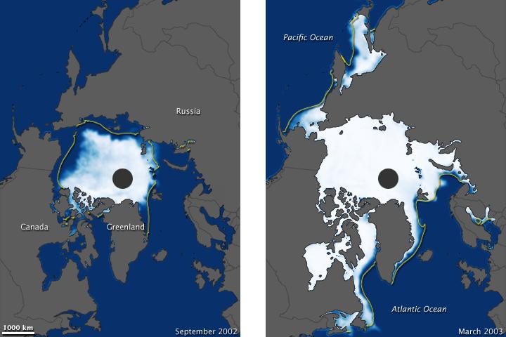Arctic Sea Ice, 2002-2003