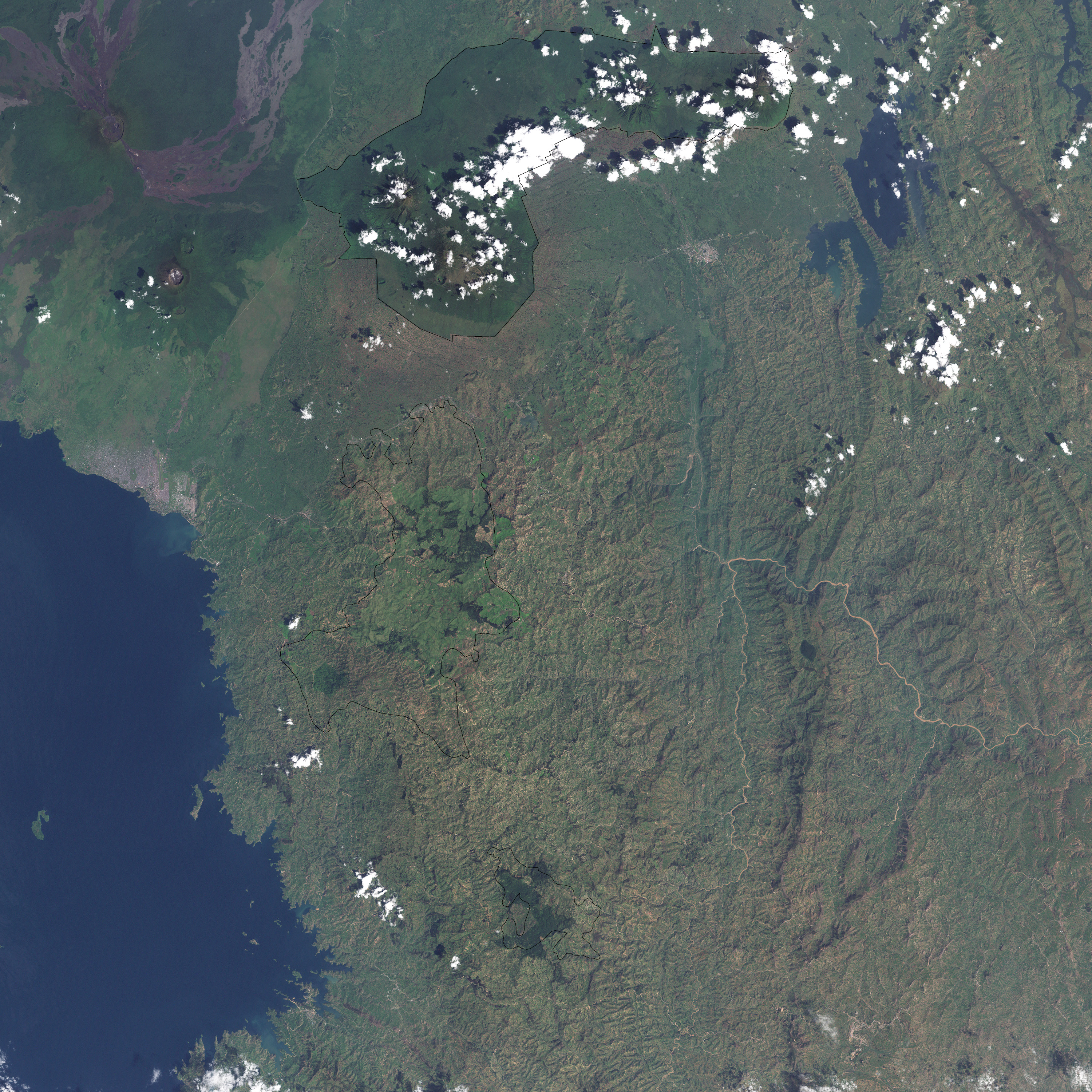 Gishwati Forest, Rwanda - related image preview