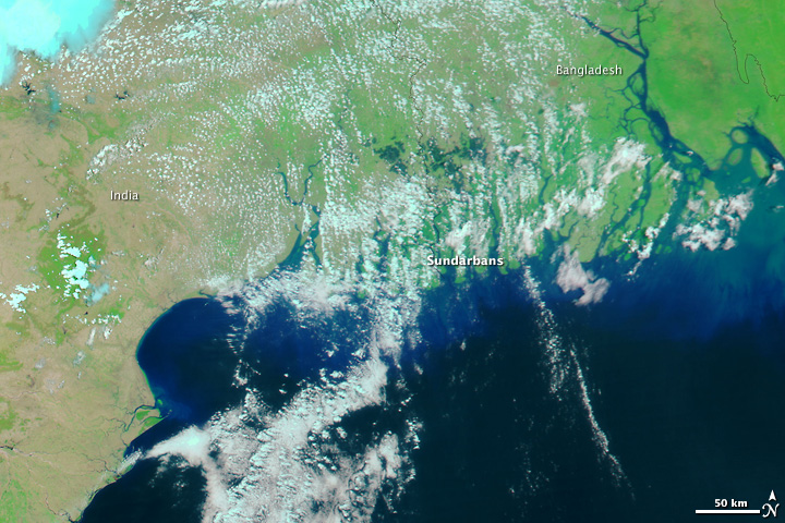 Floods from Cyclone Aila in India and Bangladesh