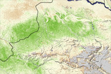 Crop Recovery in Afghanistan - selected image