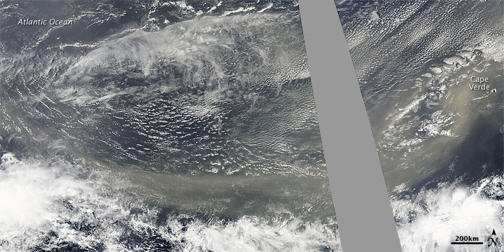 Dust Plumes off Western Africa