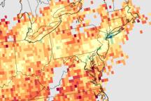 Relative Amounts of Bad Ozone Ingredients Across the U.S.