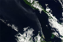 Plume from Rabaul Volcano