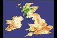 Fall Crops Fail to Emerge Across UK