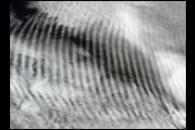 Gravity Waves Ripple over Marine Stratocumulus Clouds