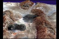 Iran's Salt Glaciers