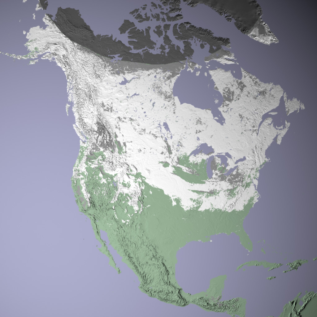 North American Snow Cover
