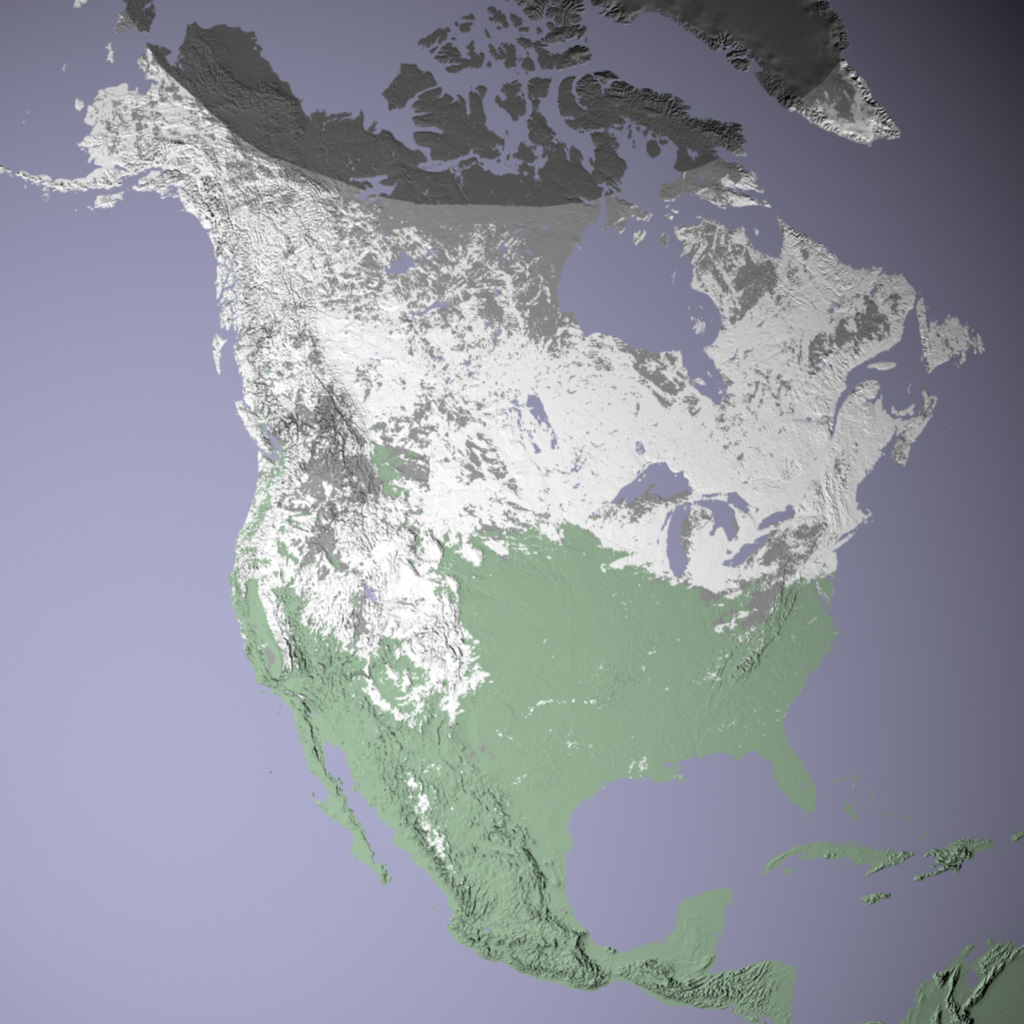 North American Snow Cover on future map of north america, printable map of north america, erie canal map north america, geophysical map of north america, vancouver north america, view satellite map north america, topographical map of north america, physical map of north america, realtors of america, ecological map of north america, satellite imagery, neon map of north america, airports of north america, satellite middle east map, aerial photograph of north america, current temperature map north america, iowa map of north america, relief map of north america, population density map of north america, city of north america,