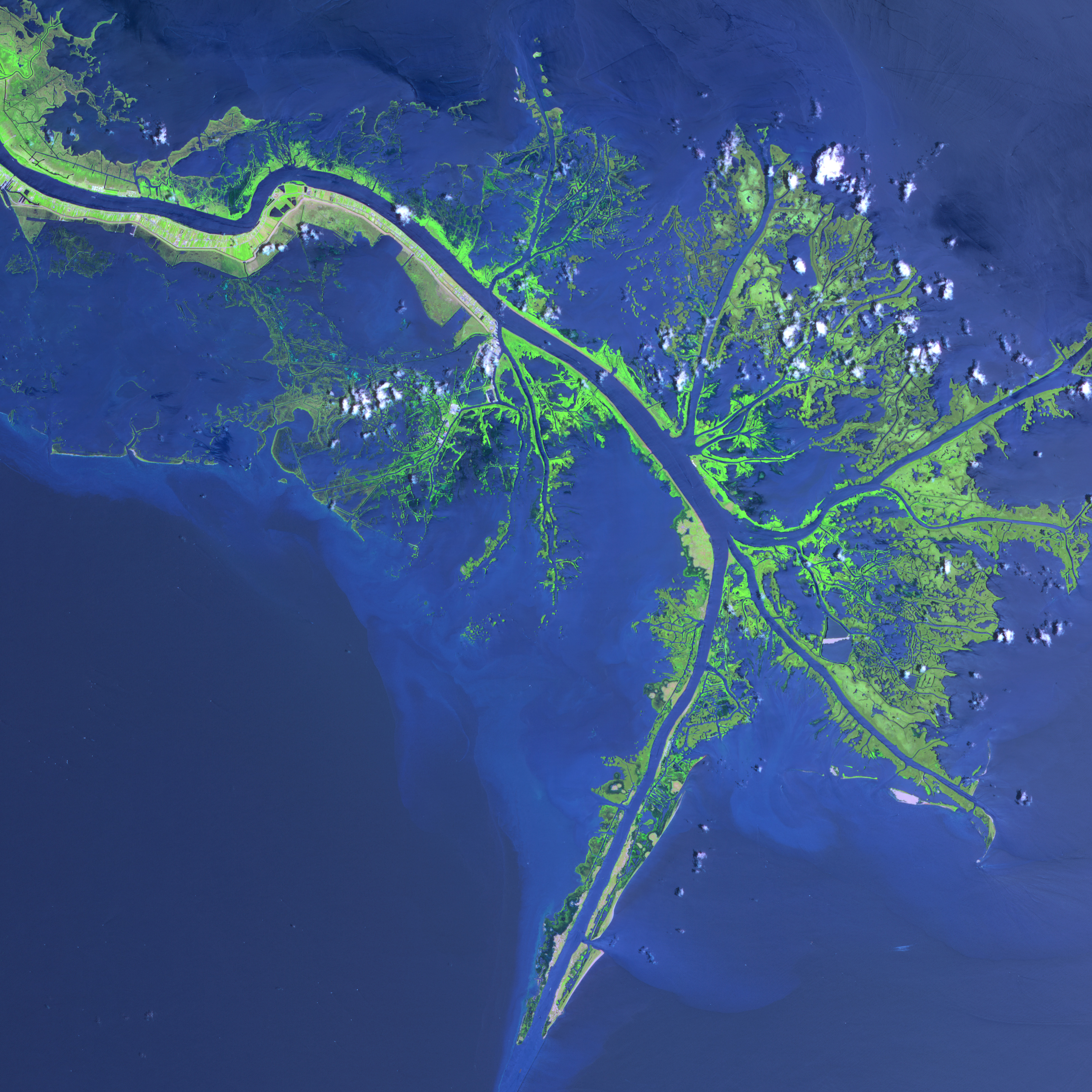 Mississippi River Delta : Image of the Day