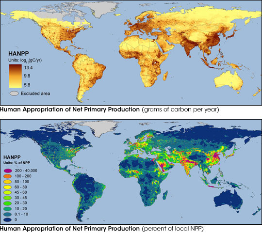 Human Consumption of Net Primary Production