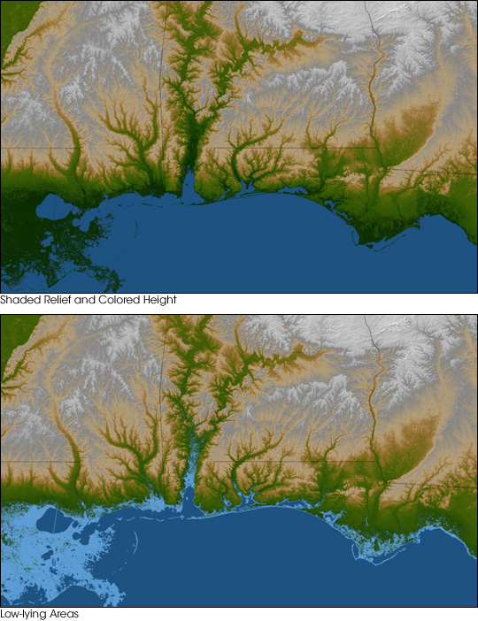 Gulf Coast Land Elevation