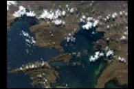 Plankton Bloom in Lake Titicaca