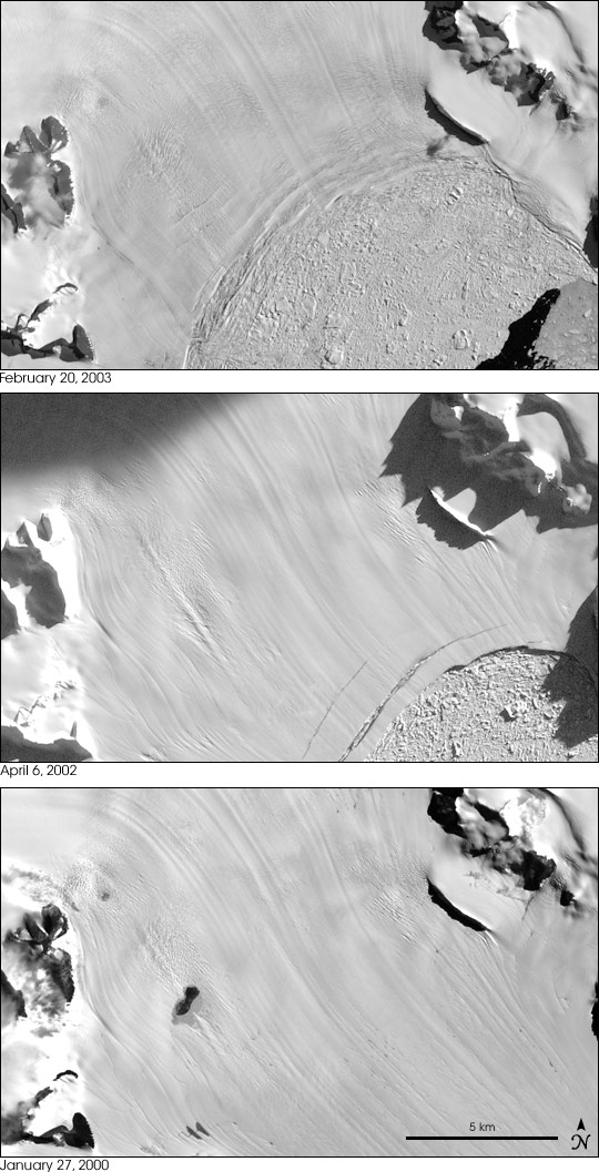 Glacier Speeds Up After Ice Shelf Collapses