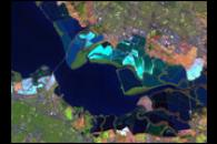 Salt Ponds in San Francisco Bay