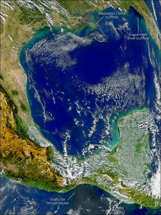 River Plumes in the Gulf of Mexico