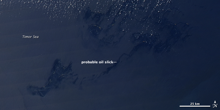 Oil Slick in the Timor Sea
