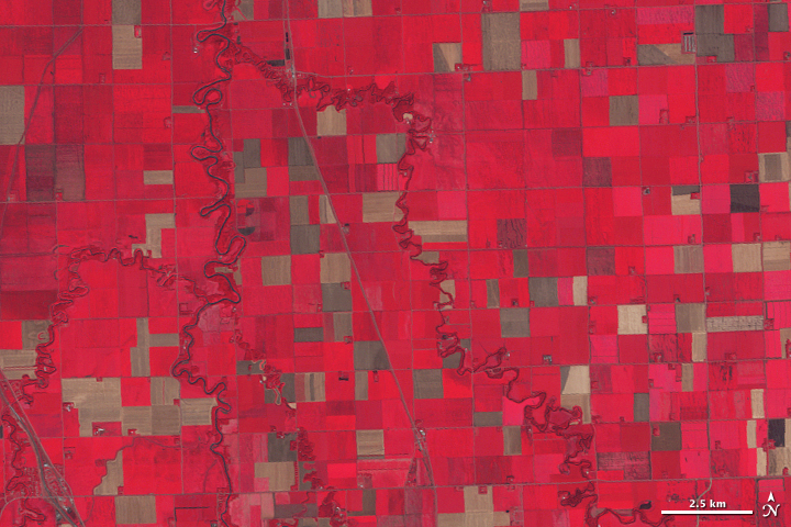 Precision Farming in Minnesota