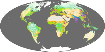 Human Ecosystems - related image preview