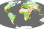 Human Ecosystems