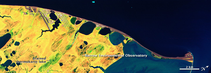 Studying Plants, Permafrost, and Carbon near Barrow, Alaska - related image preview