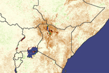Drought in Africa - selected image