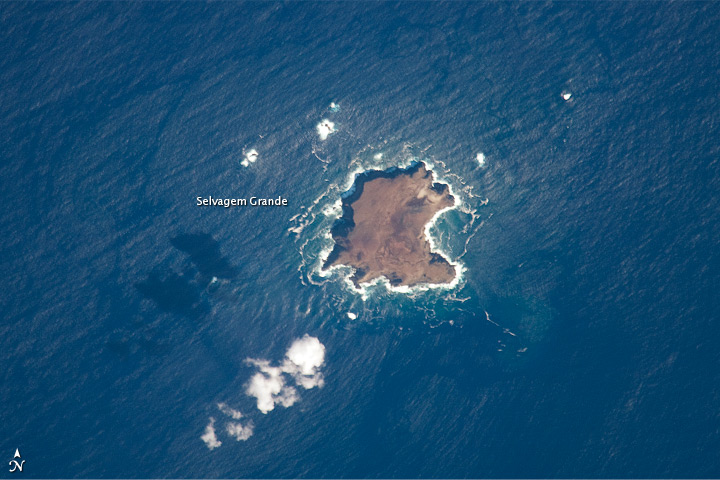 Savage Islands, Atlantic Ocean