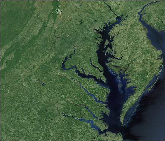 Chesapeake Bay - related image preview