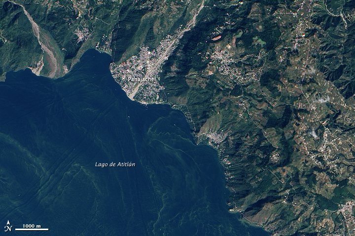 Harmful Bloom in Lake Atitlán, Guatemala