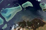 Mangroves and Coral Reefs, Viti Levu, Fiji