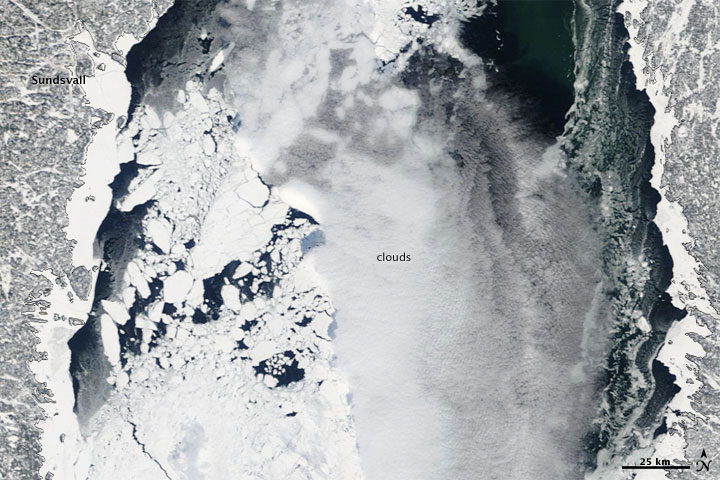 Thick Ice in the Gulf of Bothnia