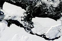 Icebergs off the Antarctic Coast