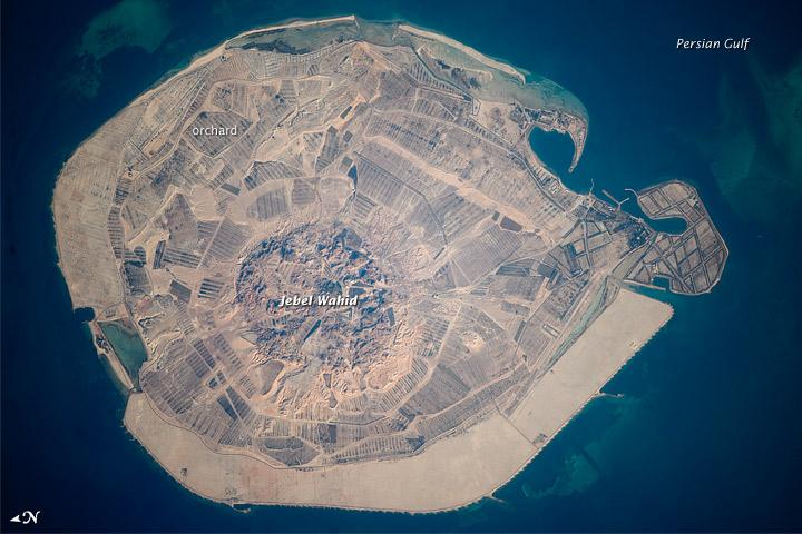 Sir Bani Yas Island, United Arab Emirates