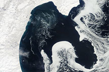 Sea Ice Imitates the Shoreline along the Kamchatka Peninsula